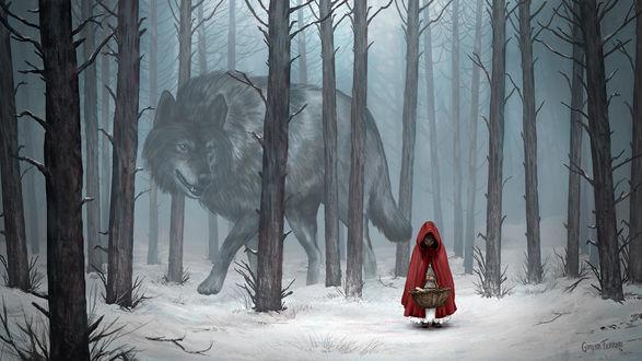 Фото Волк и Красная Шапочка в лесу, by Gimena Ferrari