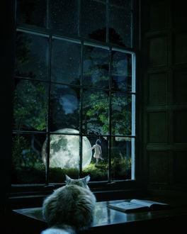 Фото Кошка смотрит в окно, за которым на траву опустилась полная луна и стоит девочка, by Marcel van Luit