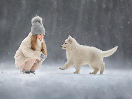 Фото Девочка сидит на корточках и с улыбкой смотрит на щенка самоеда, фотограф Елена Михайлова