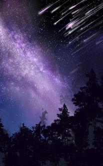 Фото Деревья на фоне ночного неба и падающих звезд, by saya
