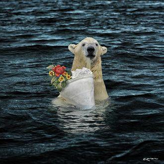 Фото Белый медведь стоит в море с букетом, by karencantuq