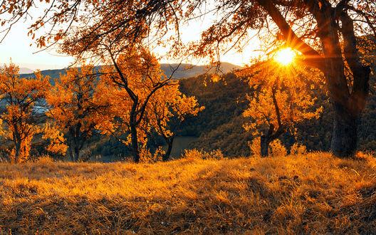 Фото Осенний закат солнца, Vogosca, Босния, фотограф Mevludin Sejmenovic