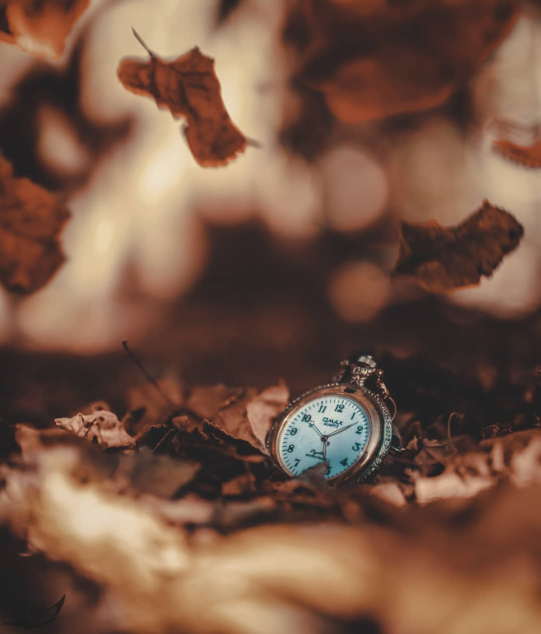 Фото Карманные часы в осенней листве, by hossein mahmoudpour
