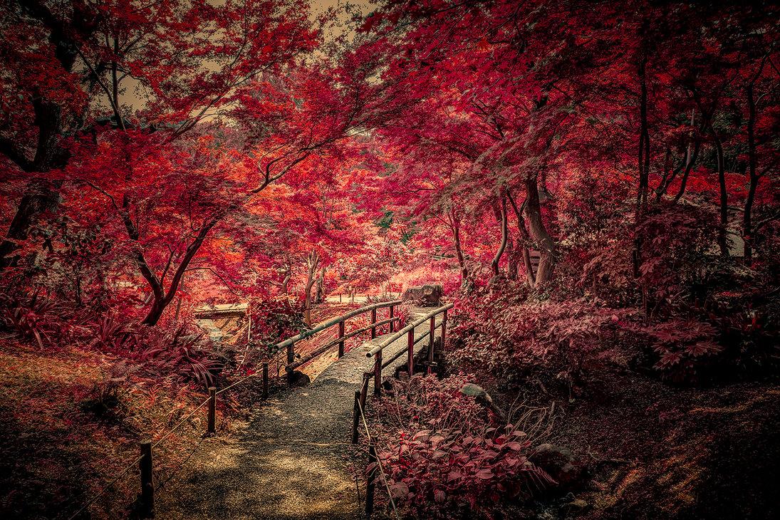 Фото Мостик в осеннем парке, by AnthonyPresley