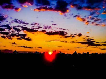 Фото Первые лучи угасающего лета