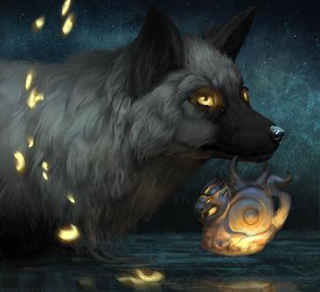 Фото Волк, окруженный светлячками, несет в зубах светящийся амулет, by Jade Mere