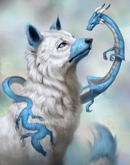 Фото Маленький дракон обвил белого волка, by Jade Mere