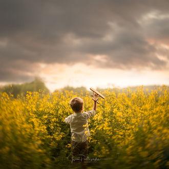 Фото Мальчик с игрушечным самолетиком стоит на цветочном поле, фотограф Iwona Podlasinska