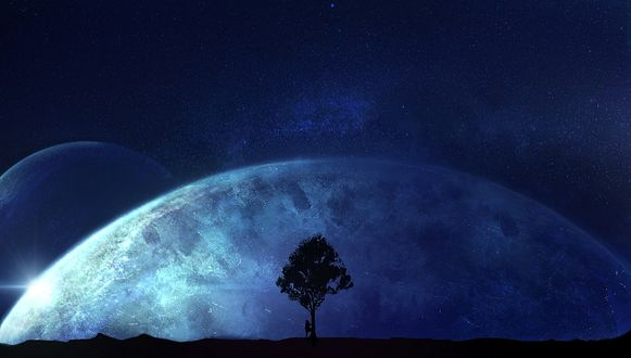 Фото Девушка стоит у одинокого дерева на фоне планеты