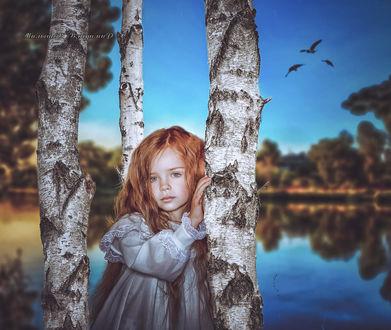 Фото Девочка на фоне реки стоит около трех берез