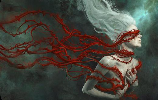 Фото Девушка в красных колючих веревках, by Marcela Bolivar