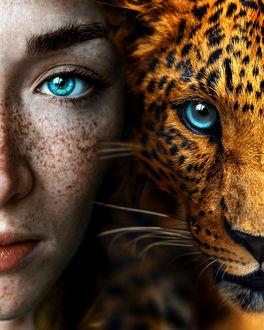 Фото Голубоглазая девушка рядом с голубоглазым леопардом, by claireluxtonstudio