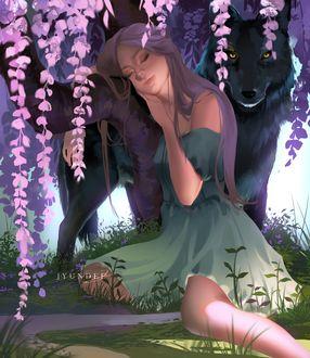 Фото Девушка сидит у дерева, за которым стоит волк, by Jyundee