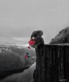 Фото Слоненок с букетом роз сидит на скале, by karencantuq