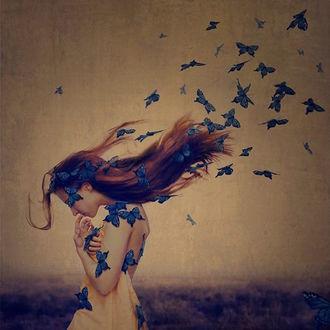Фото Девушка с бабочками, bу Brooke Shaden