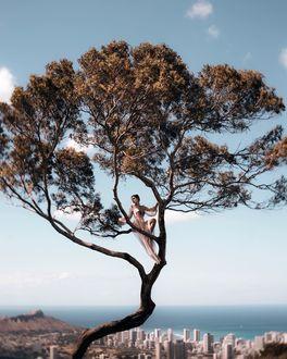 Фото Девушка на дереве, by christopher. james