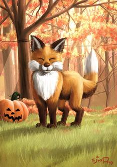 Фото Довольная лисичка у тыквы