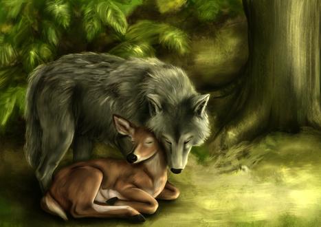 Фото Рядом с олененком стоит волк, by Alrooney