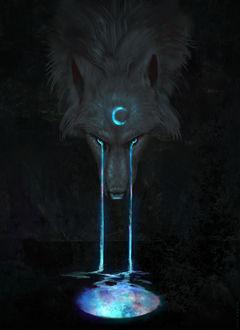 Фото Волк с полумесяцем на морде, из глаз которого течет разноцветная жидкость, by JadeMerien