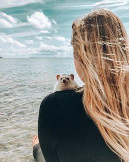 Фото Ежик на плече девушки