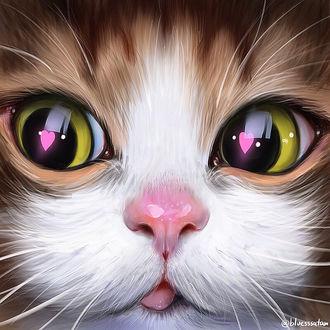 Фото Мордочка кошки с сердечками в глазах, by bluesssatan