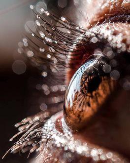 Фото Глаз девушки с капельками воды