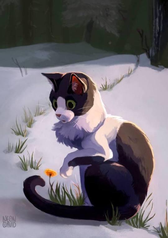 Фото Кошка сидит на снегу перед цветком