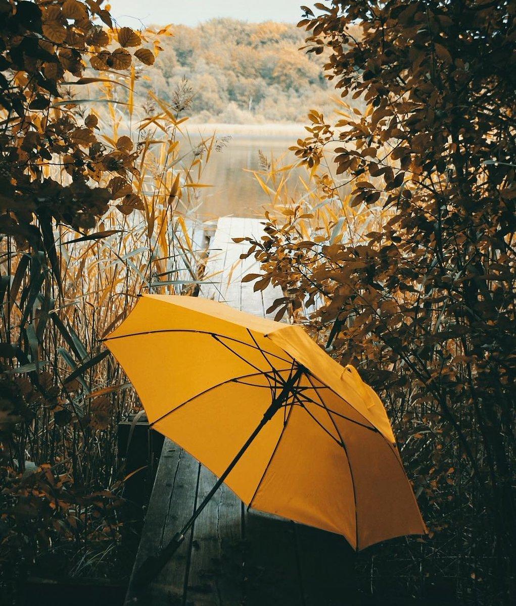 Фото Желтый зонт на мостике