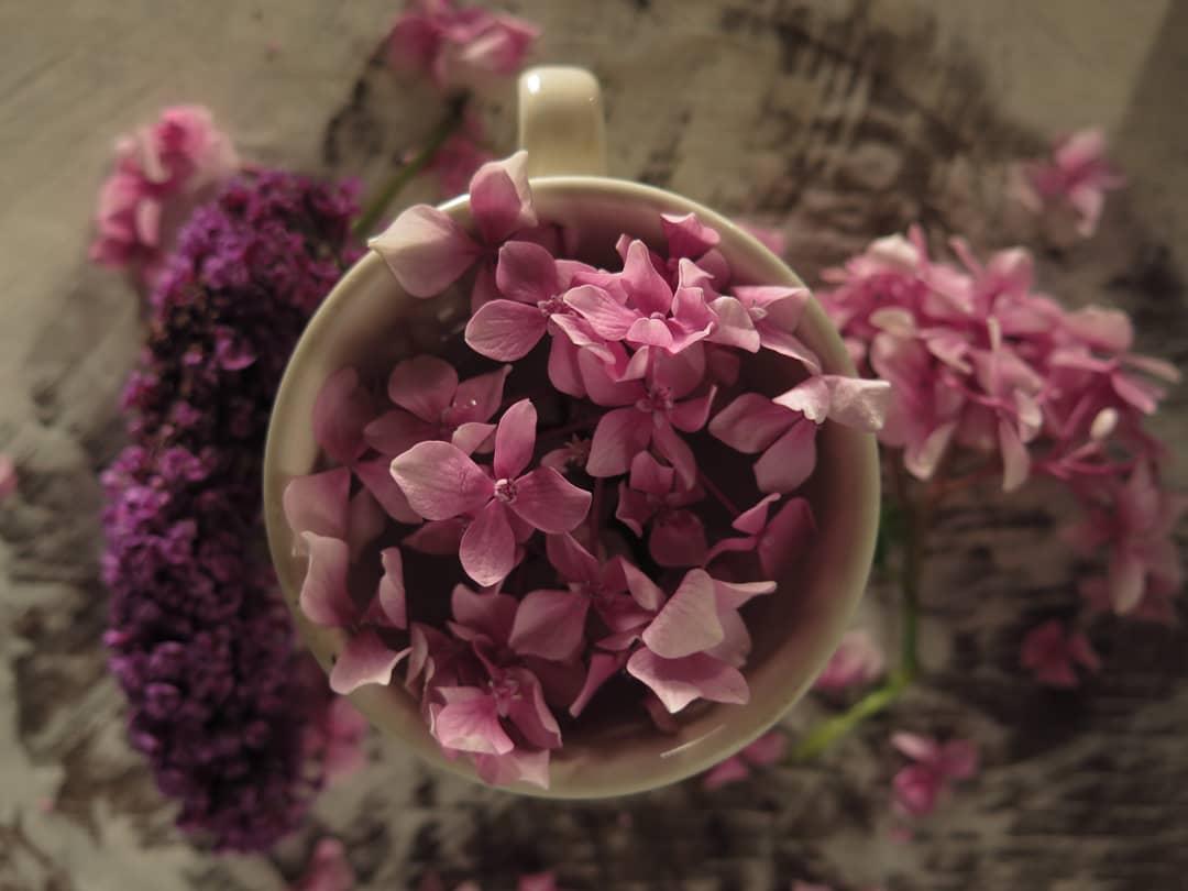 Фото Чашка с цветочками сирени