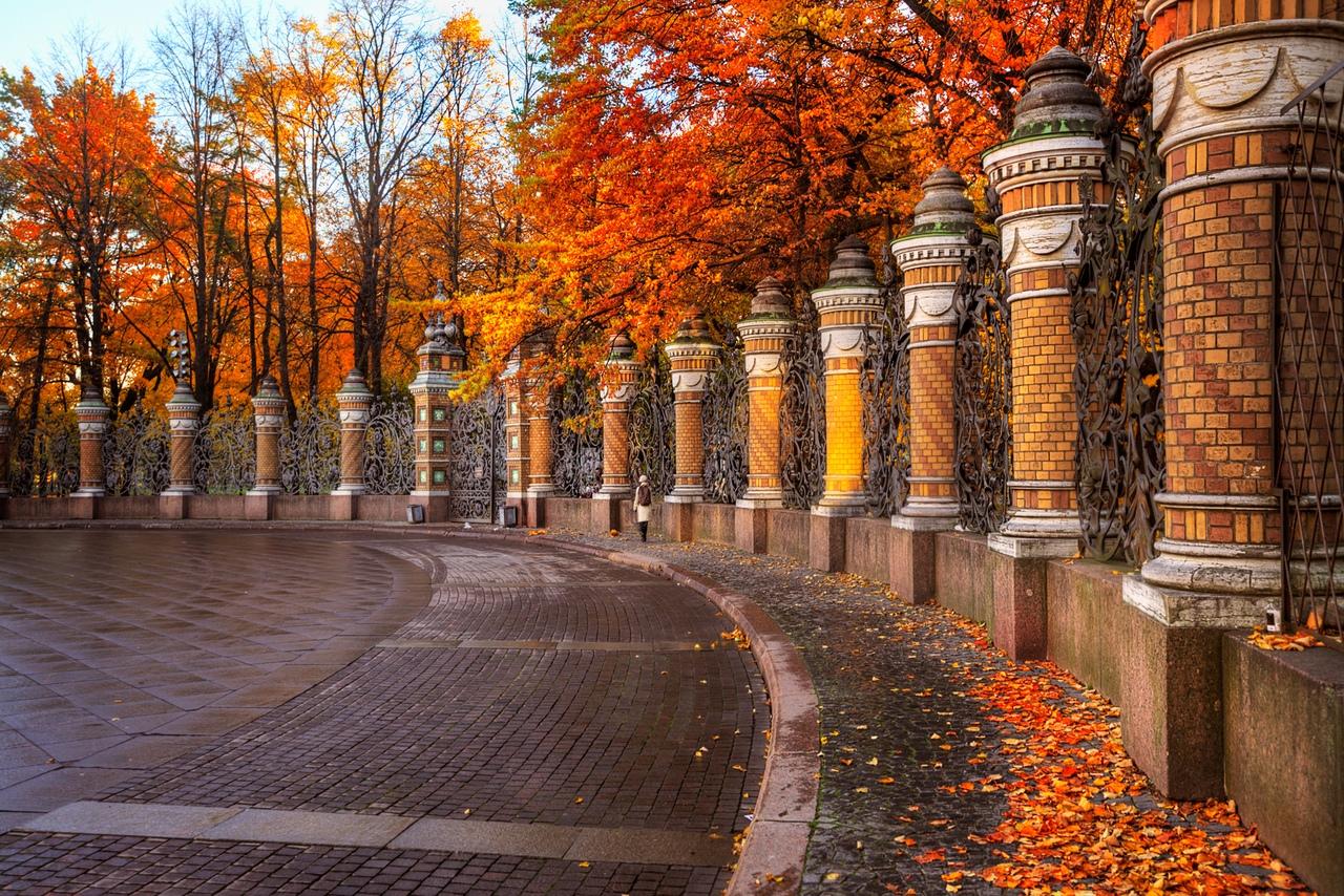 Фото Осенние деревья у забора вдоль дороги, Фотограф Эдуард Гордеев