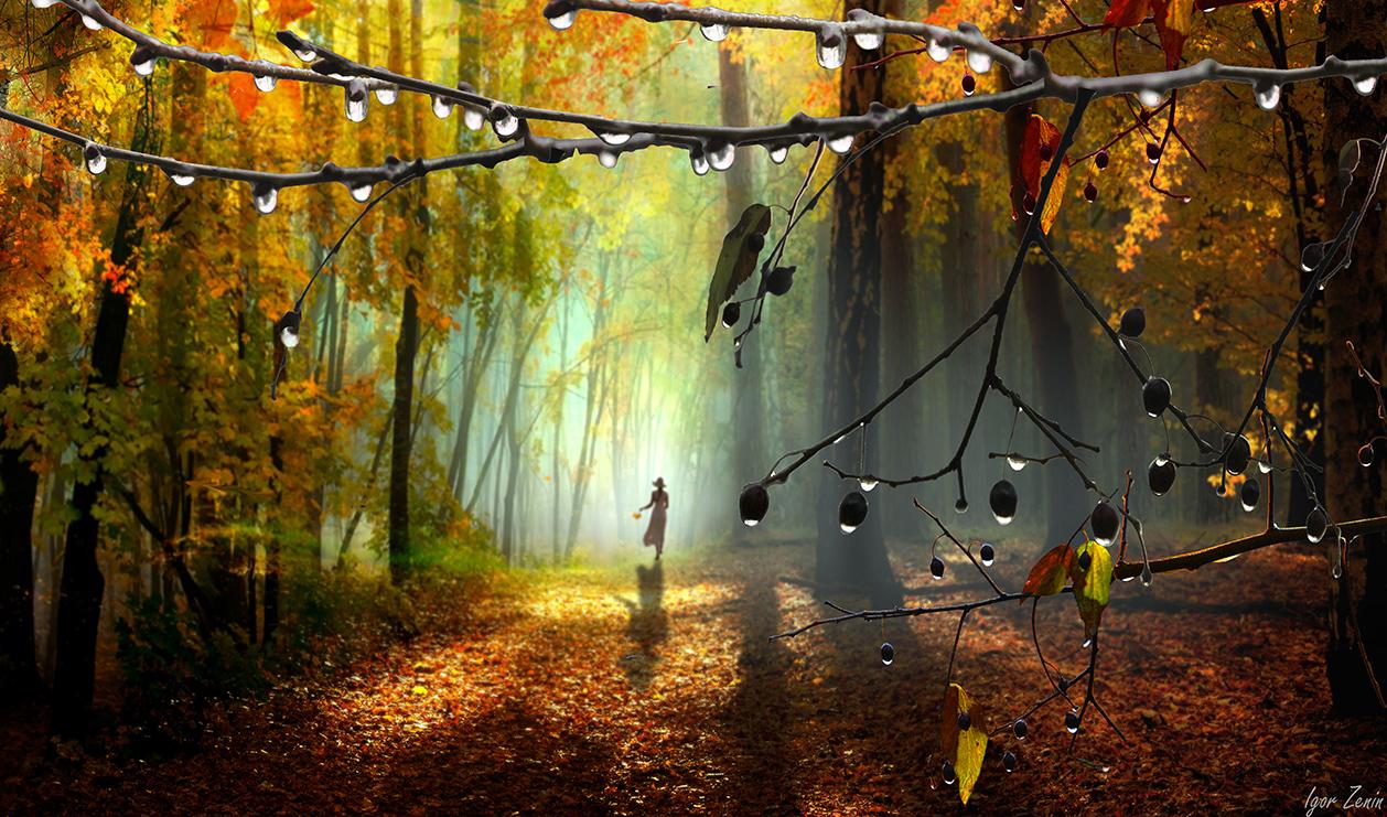 Фото Девушка в осеннем парке, by Игорь Зенин