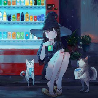 Фото Ведьмочка и две кошки у автомата с напитками ночью, by minnadaijoubu