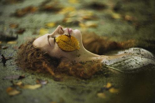 Фото Девушка с осенним листом на лице. Фотограф Alexandra Bochkareva