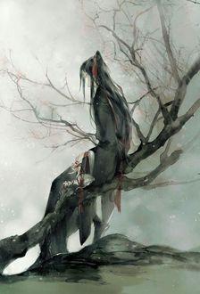 Фото Вэй У Сянь сидит спиной на дереве из китайского аниме Mo Dao Zu Shi / Магистр дьявольского культа