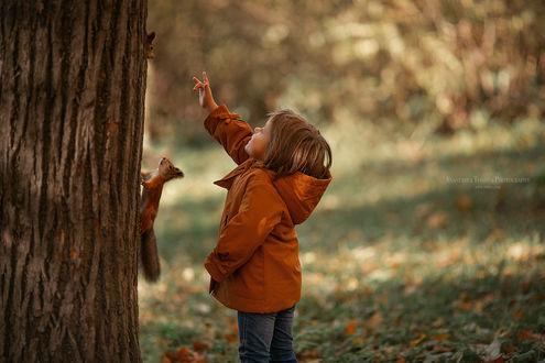 Фото Девочка стоит у дерева и смотрит на белок. Фотограф Анастасия Тордуа