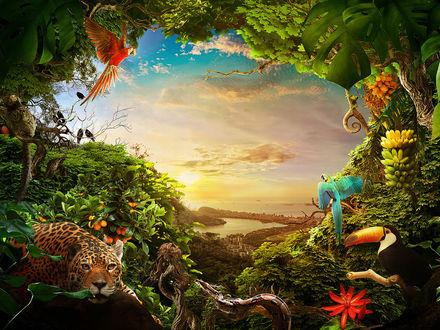 Фото Тропические животные и птицы в джунглях, впереди расстилается океан. Автор Fabio Araujo