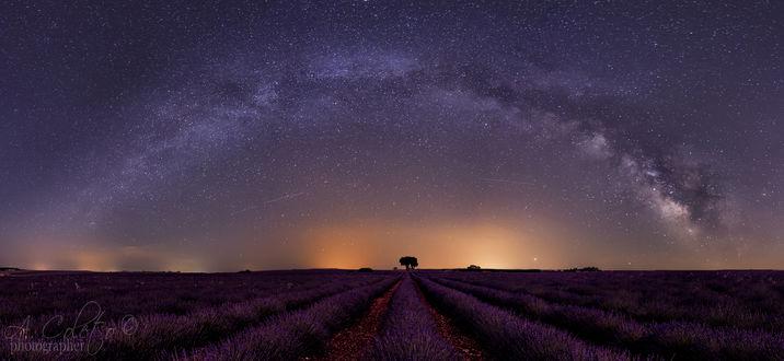 Фото Млечный путь над лавандовым полем. Фотограф Alvaro Coleto