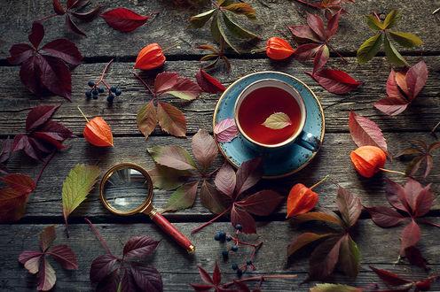 Фото Чашка чая с осенним листочком на блюдце на дощатой поверхности, усыпанной листьями. Фотограф Valeriya Tikhonova