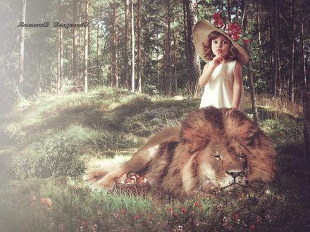 Фото В лесу девочка стоит позади спящего льва, фотограф Малышев Владимир