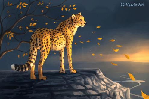 Фото Леопард стоит на скале на фоне осеннего дерева, by Vawie-Art