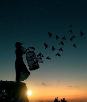 Фото Девушка выпускает птиц из клетки, by Abdullah Evindar