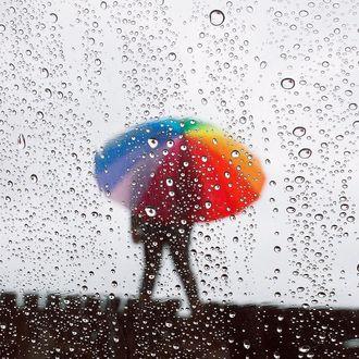 Фото Влюбленные стоят с зонтом под дождем