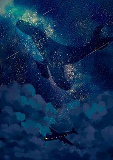 Фото Парящий кит над самолетом в облаках, by Jedit
