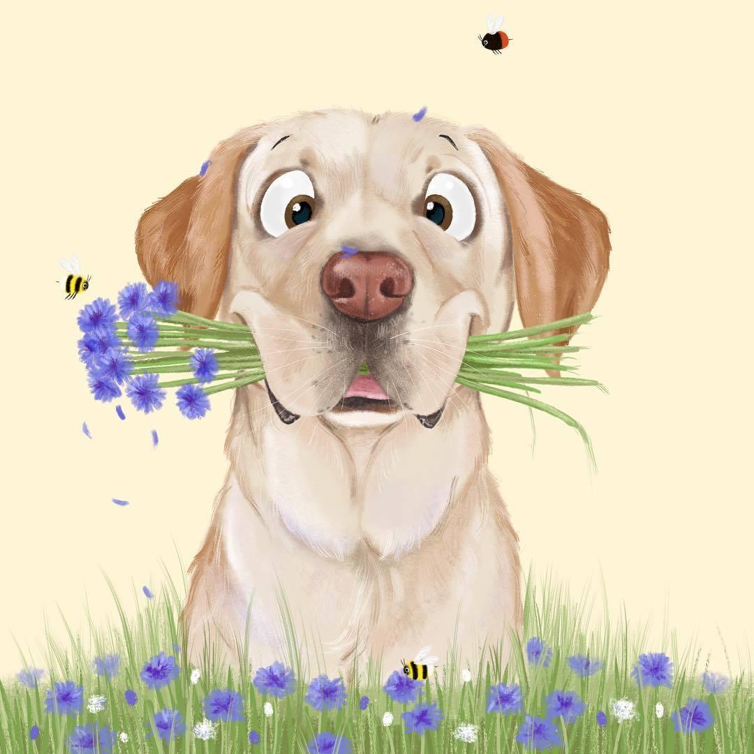 картинка собачка с цветком в зубах просто