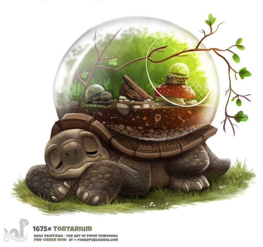 Прикольные рисунки черепахи