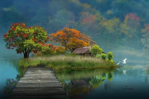 Фото Мостик к островку с домиком, фотограф iDs