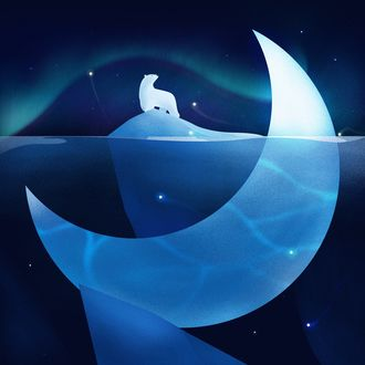 Фото Белый медведь на льдине