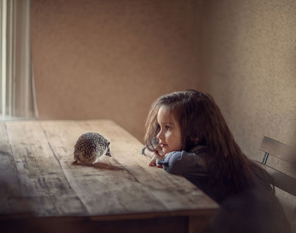 Фото Девочка сидит за столом и смотрит на ежика, фотограф Степанова Дарья