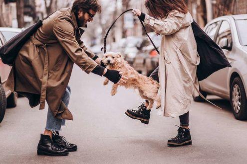 Фото Влюбленная пара Дениc и Ира и их пес, фотограф Dmitriy Maley