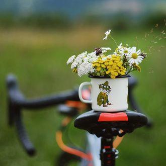 Фото Кружка с цветами на велосипеде